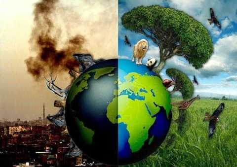 susanne_posel_news_-ecocide-earth1